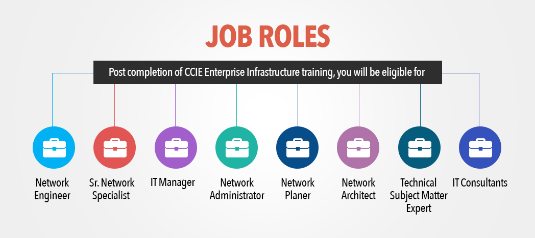 Job role after CCIE R&S - Network Bulls