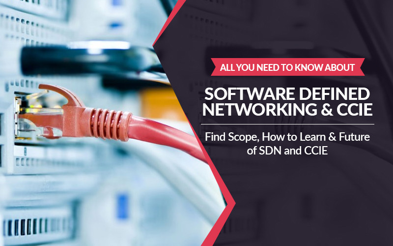 All you need to know about Software Defined Networking (SDN) & CCIE | Find Scope, How to Learn & Future of SDN and CCIE