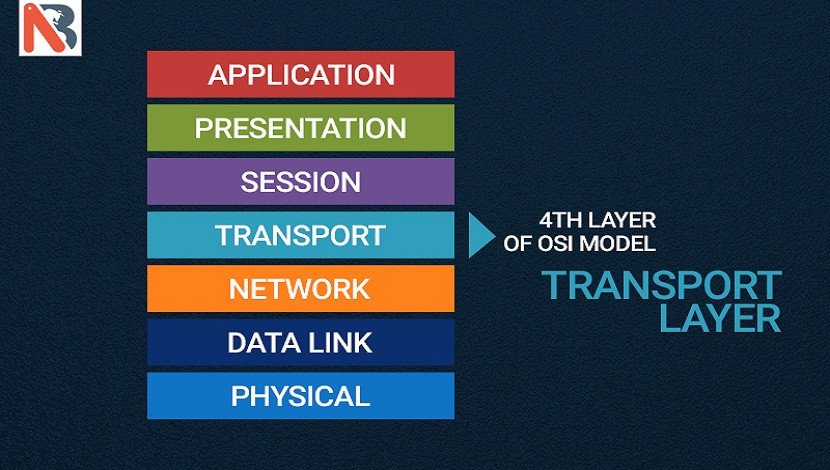 Understanding 4th Layer of OSI Model - Transport Layer