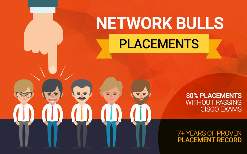 Network Bulls - Placements