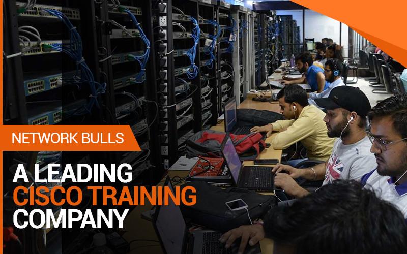 Network Bulls- Your IT Training Partner