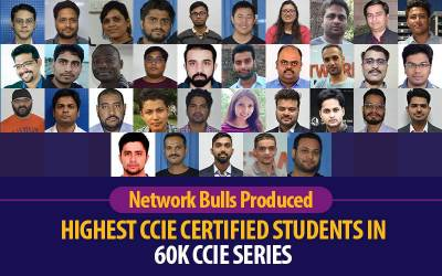 Network Bulls Produced Highest CCIE Certified Students in 60k CCIE Series